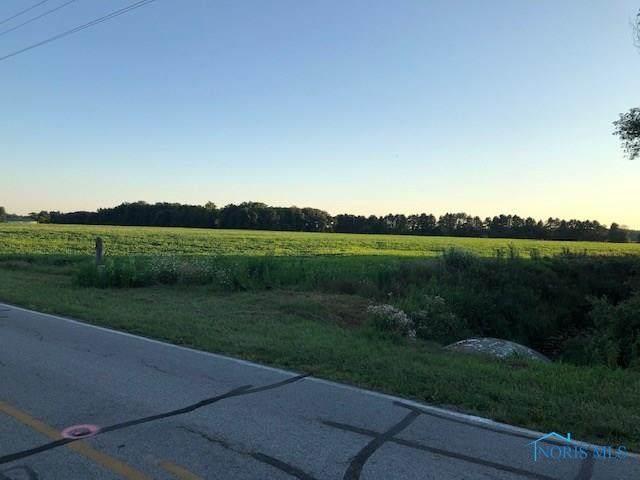 00 County Road 11-2, Wauseon, OH 43515 (MLS #6057567) :: The Kinder Team