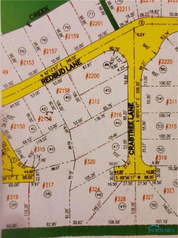 315 Cherry Tree Lane, Delta, OH 43515 (MLS #6067671) :: CCR, Realtors