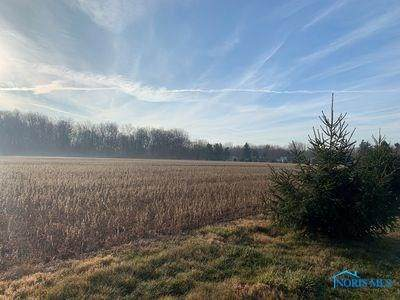 5601 Weckerly Road Lot 1, Whitehouse, OH 43571 (MLS #6072267) :: Key Realty