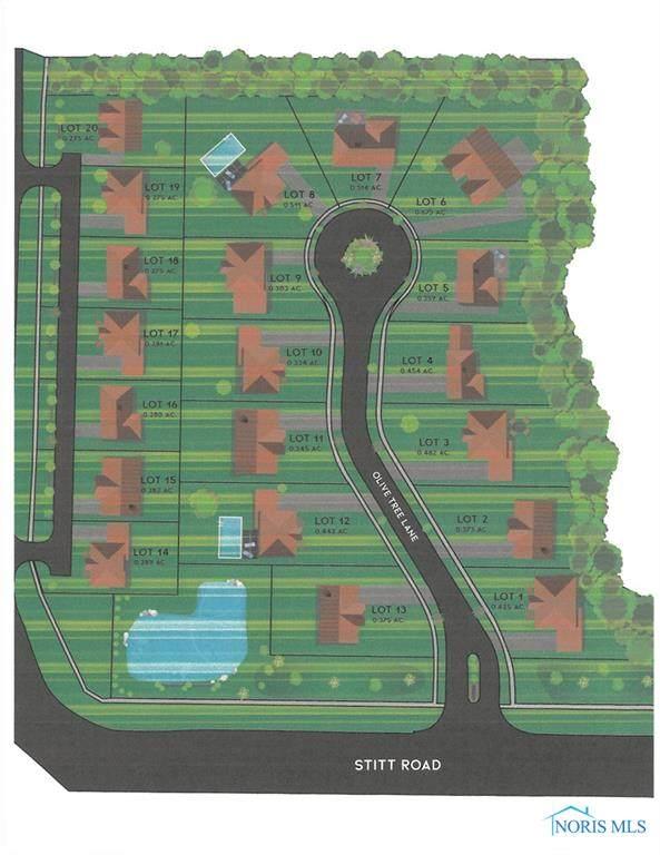 5556 Olive Tree Lane, Monclova, OH 43542 (MLS #6072483) :: Key Realty