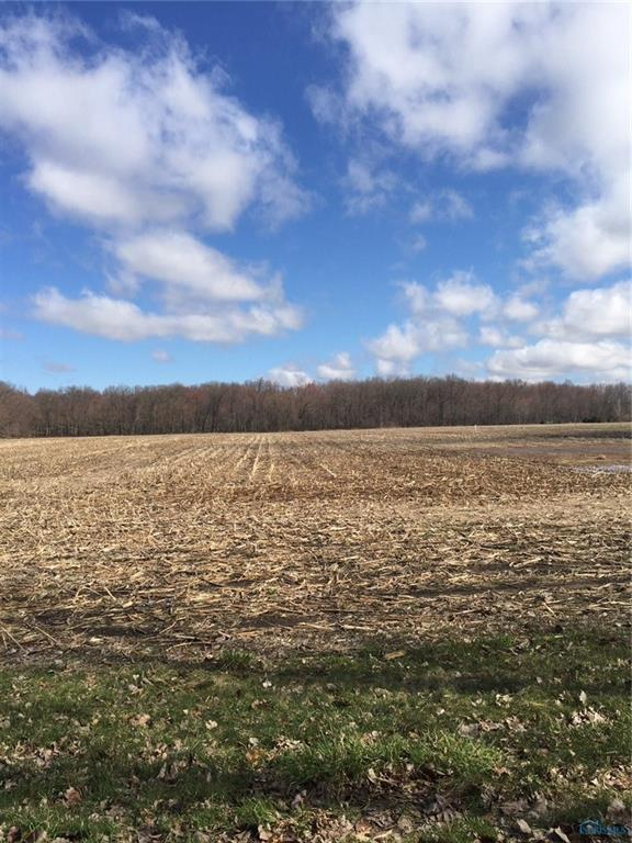 0 County Road E, Swanton, OH 43558 (MLS #6037647) :: RE/MAX Masters