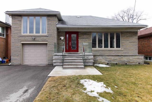 10 Josephine Rd, Toronto, ON M3H 3G4 (#C4419810) :: Jacky Man | Remax Ultimate Realty Inc.