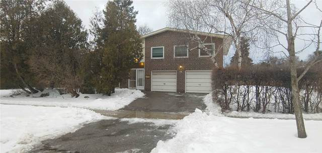 48 Denver Cres, Toronto, ON M2J 1G8 (MLS #C5132673) :: Forest Hill Real Estate Inc Brokerage Barrie Innisfil Orillia