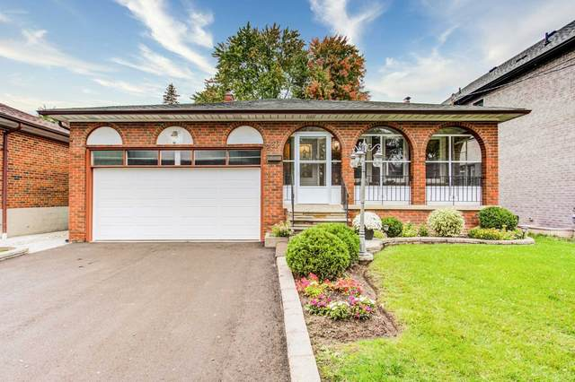226 Connaught Ave, Toronto, ON M2M 1H5 (#C5411377) :: Royal Lepage Connect