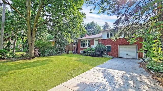 6 Fargo Ave, Toronto, ON M2M 1T9 (#C5411477) :: Royal Lepage Connect