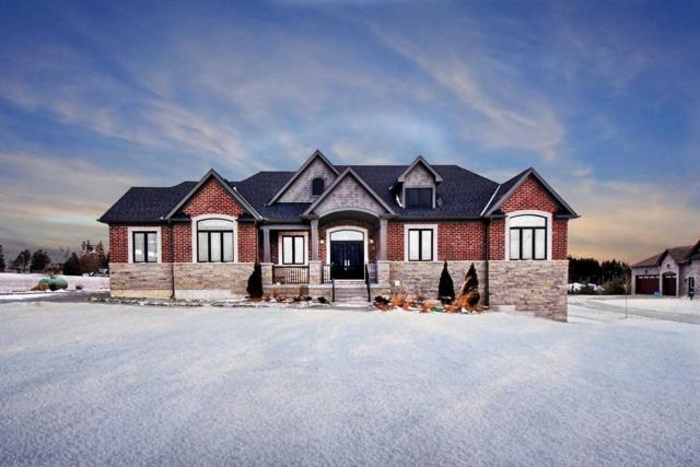 9737 Mud Lake Rd, Whitby, ON L0B 1A0 (#E4411190) :: Jacky Man | Remax Ultimate Realty Inc.