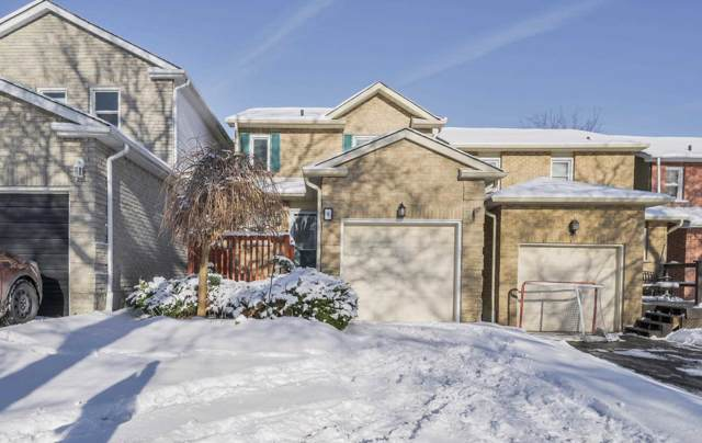8 Greenfield Cres, Whitby, ON L1N 7G3 (#E4647349) :: Jacky Man | Remax Ultimate Realty Inc.