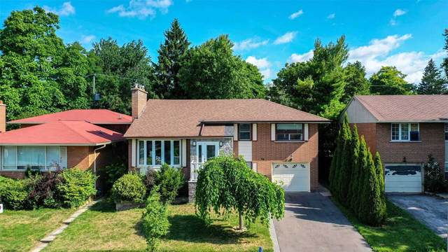 64 Sloley Rd, Toronto, ON M1M 1C8 (#E4904536) :: The Ramos Team