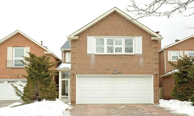 85 River Grove Dr, Toronto, ON M1W 3T8 (#E5127417) :: The Johnson Team