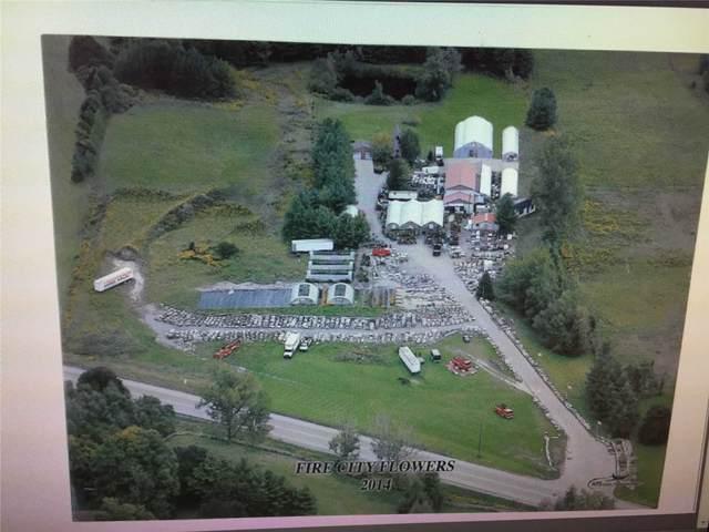 5055 N Simcoe St, Oshawa, ON L1H 7K4 (MLS #E5130789) :: Forest Hill Real Estate Inc Brokerage Barrie Innisfil Orillia