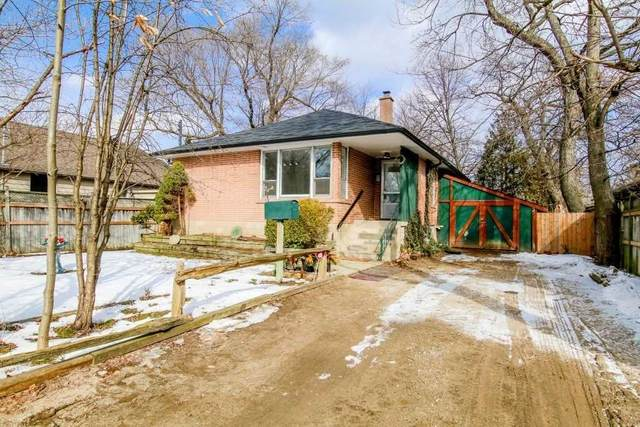 49 Amiens Rd, Toronto, ON M1E 3S7 (MLS #E5135762) :: Forest Hill Real Estate Inc Brokerage Barrie Innisfil Orillia
