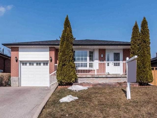 40 Broadbent Ave, Toronto, ON M1K 4R2 (MLS #E5136741) :: Forest Hill Real Estate Inc Brokerage Barrie Innisfil Orillia