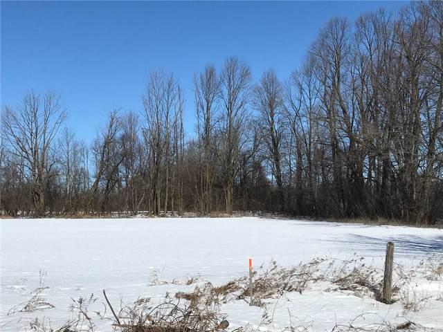 2375 Puckrin Dr, Scugog, ON L0C 1G0 (MLS #E5137550) :: Forest Hill Real Estate Inc Brokerage Barrie Innisfil Orillia