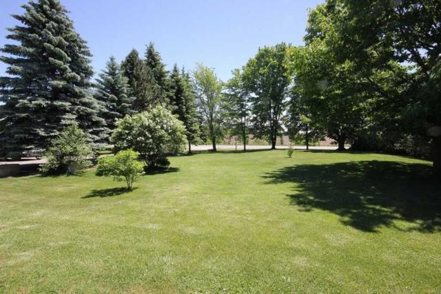 7176 8th Line, New Tecumseth, ON L0G 1A0 (#N4365151) :: Jacky Man   Remax Ultimate Realty Inc.