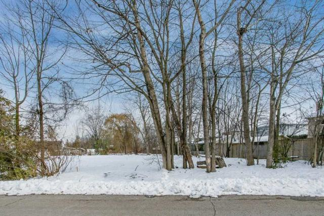 1949 St Paul Rd, Innisfil, ON L9S 1T6 (#N4391223) :: Jacky Man | Remax Ultimate Realty Inc.