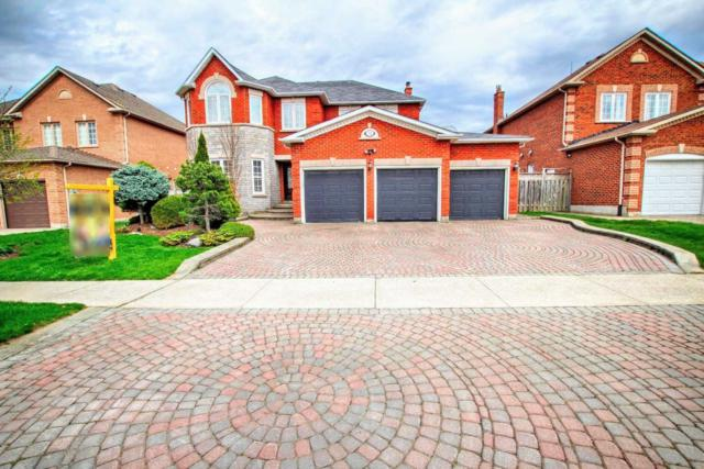31 Eyer Dr, Markham, ON L6C 1T8 (#N4400240) :: Jacky Man   Remax Ultimate Realty Inc.