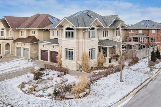 1116 Quaker Tr, Newmarket, ON L3X 3E2 (#N4419193) :: Jacky Man | Remax Ultimate Realty Inc.