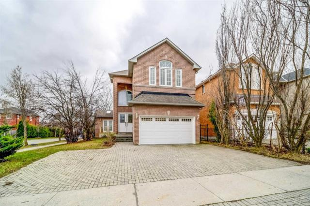 145 Alpine Cres, Richmond Hill, ON L4S 1W2 (#N4426958) :: Jacky Man   Remax Ultimate Realty Inc.