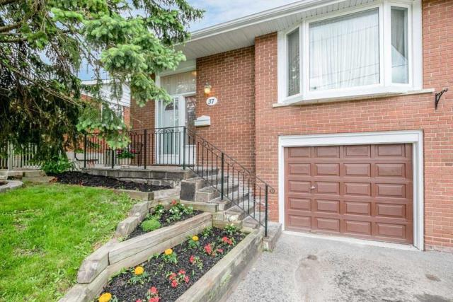 37 Walter Ave, Newmarket, ON L3Y 2T2 (#N4489340) :: Jacky Man | Remax Ultimate Realty Inc.