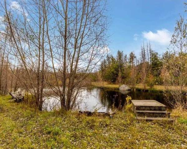 2705 Concession Rd 2, Adjala-Tosorontio, ON L0N 1P0 (#N4542440) :: Jacky Man | Remax Ultimate Realty Inc.