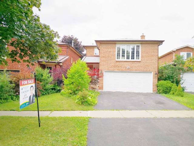 73 Belvedere Cres, Richmond Hill, ON L4C 8V3 (#N4555107) :: Jacky Man | Remax Ultimate Realty Inc.