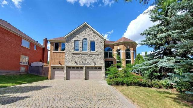 67 Wingate Cres, Richmond Hill, ON L4B 2Y9 (#N4891177) :: The Ramos Team