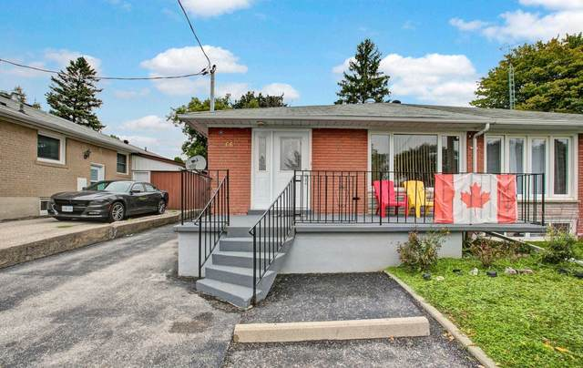 66 Walter Ave, Newmarket, ON L3Y 2T3 (#N4910652) :: The Ramos Team