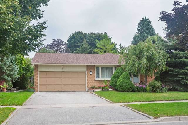 47 Howlett Ave, Newmarket, ON L3Y 5S6 (#N4915403) :: The Ramos Team