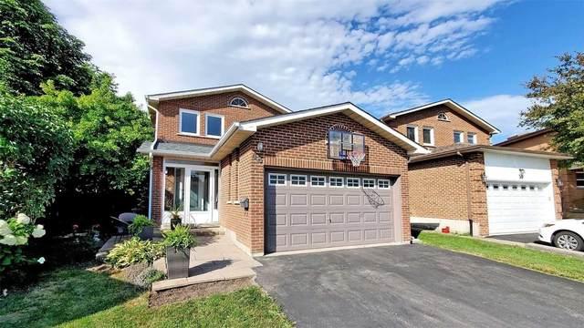 48 Stargell Cres, Markham, ON L3P 4J9 (MLS #N5091870) :: Forest Hill Real Estate Inc Brokerage Barrie Innisfil Orillia