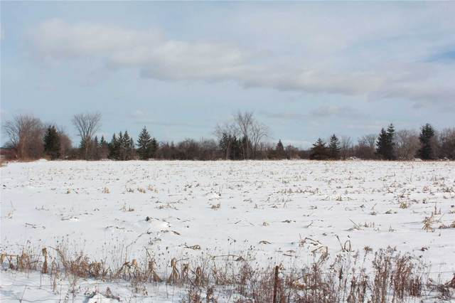 Lot 3 Woodbine Ave, Georgina, ON L0E 1P0 (MLS #N5094951) :: Forest Hill Real Estate Inc Brokerage Barrie Innisfil Orillia