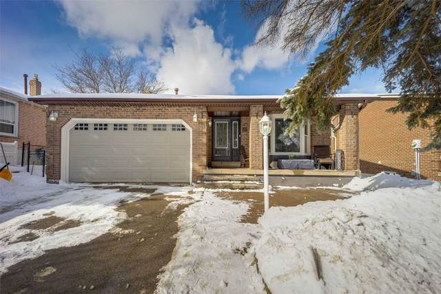 183 Walton Dr, Aurora, ON L4G 3S2 (MLS #N5123206) :: Forest Hill Real Estate Inc Brokerage Barrie Innisfil Orillia