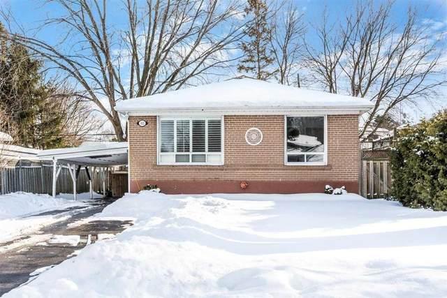 103 Aurora Heights Dr, Aurora, ON L4G 2X1 (MLS #N5123267) :: Forest Hill Real Estate Inc Brokerage Barrie Innisfil Orillia