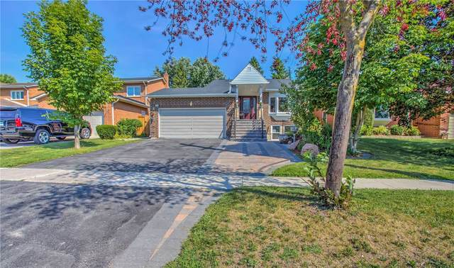 209 London Rd, Newmarket, ON L3Y 6H8 (MLS #N5133411) :: Forest Hill Real Estate Inc Brokerage Barrie Innisfil Orillia
