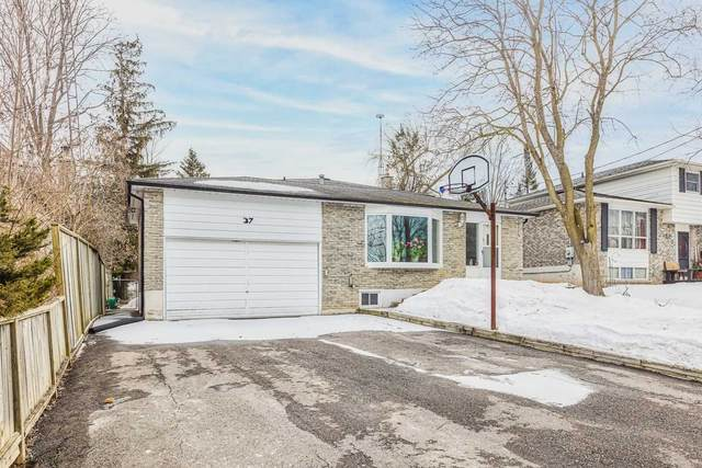 37 W Maple Ave, New Tecumseth, ON L0G 1A0 (MLS #N5136746) :: Forest Hill Real Estate Inc Brokerage Barrie Innisfil Orillia