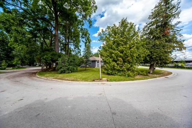 233 Cameron Cres, Georgina, ON L4P 2N7 (MLS #N5136846) :: Forest Hill Real Estate Inc Brokerage Barrie Innisfil Orillia