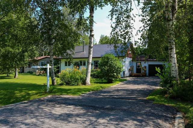 753 James St, Innisfil, ON L9S 2G7 (MLS #N5322857) :: Forest Hill Real Estate Inc Brokerage Barrie Innisfil Orillia