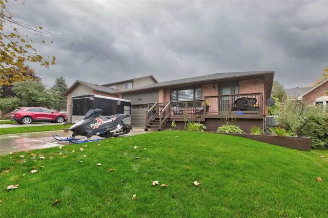 65 E Maple Ave, New Tecumseth, ON L0M 1K0 (#N5393228) :: Royal Lepage Connect