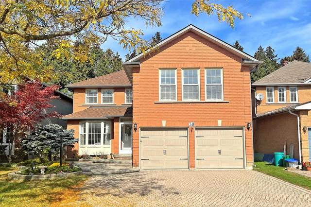 38 Loyal Blue Cres, Richmond Hill, ON L4S 1A3 (#N5404187) :: Royal Lepage Connect