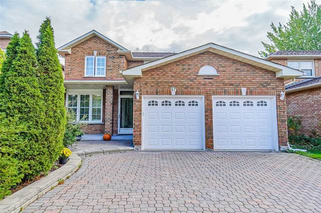 37 Brookwood Dr, Richmond Hill, ON L4S 1E9 (#N5406247) :: Royal Lepage Connect