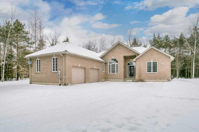 12 Pine Hill Dr, Springwater, ON L0L 2K0 (#S4385349) :: Jacky Man | Remax Ultimate Realty Inc.