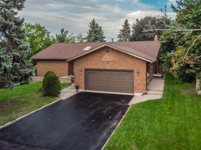 27 Briar Rd, Barrie, ON L4N 5B6 (#S4418440) :: Jacky Man | Remax Ultimate Realty Inc.