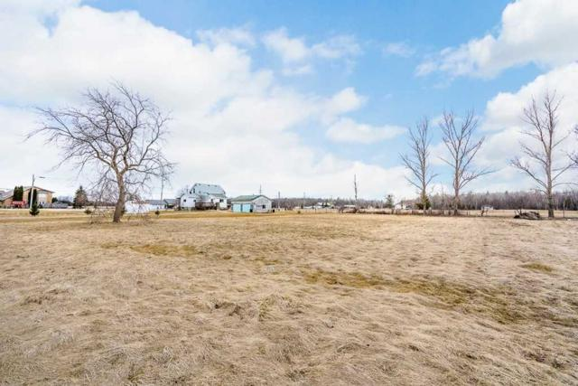 1012 E 4 Flos Rd, Springwater, ON L0L 2K0 (#S4418599) :: Jacky Man | Remax Ultimate Realty Inc.