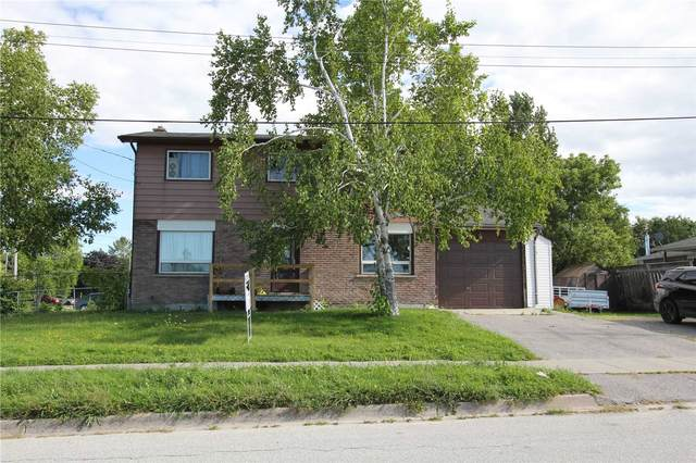 256 Regina St, Clearview, ON L0M 1S0 (#S4879599) :: The Ramos Team