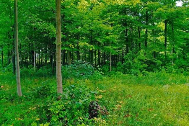 1936 Highway 11, Oro-Medonte, ON L0L 2L0 (MLS #S5087031) :: Forest Hill Real Estate Inc Brokerage Barrie Innisfil Orillia