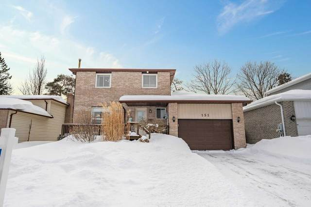 151 Little Ave, Barrie, ON L4N 6L6 (MLS #S5133117) :: Forest Hill Real Estate Inc Brokerage Barrie Innisfil Orillia