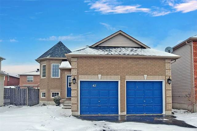 42 Irene Dr, Barrie, ON L4N 0Y8 (MLS #S5134649) :: Forest Hill Real Estate Inc Brokerage Barrie Innisfil Orillia