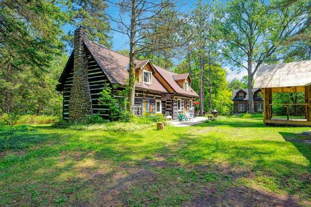 1595 Cedar Point Rd, Tiny, ON L9M 0T8 (#S5348610) :: Royal Lepage Connect