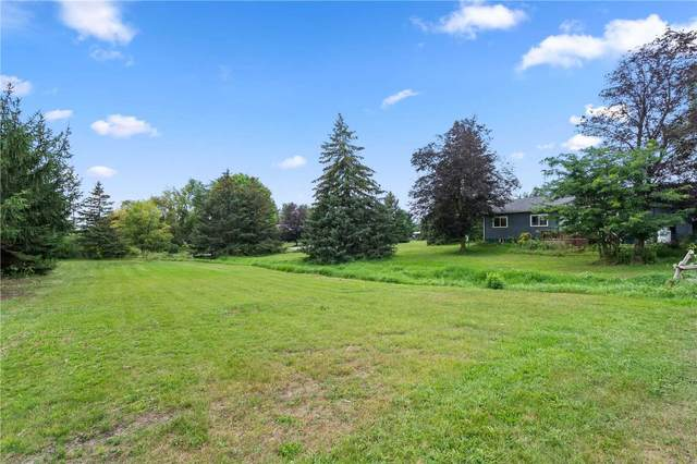 2432 E Holmes Dr, Springwater, ON L0M 1T2 (#S5354443) :: Royal Lepage Connect