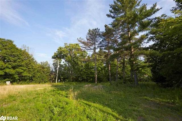 5 W Moonstone Rd, Oro-Medonte, ON L0K 1E0 (#S5364594) :: Royal Lepage Connect