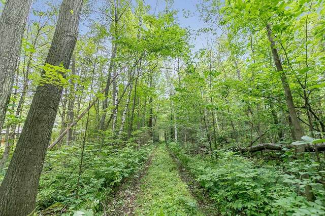 266 E Peter St, Oro-Medonte, ON L0K 2C0 (#S5368811) :: Royal Lepage Connect